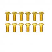 bolt-token-mtb/road-510-skive-alu-guld-5x10mm