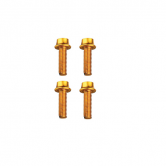 bolt-token-mtb/road-516-dunk-alu-guld-5x16mm